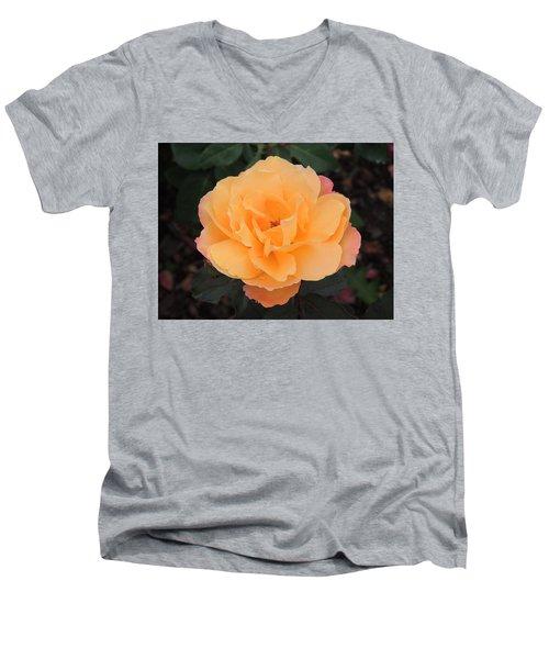 Velvety Orange Rose Men's V-Neck T-Shirt by Teresa Schomig