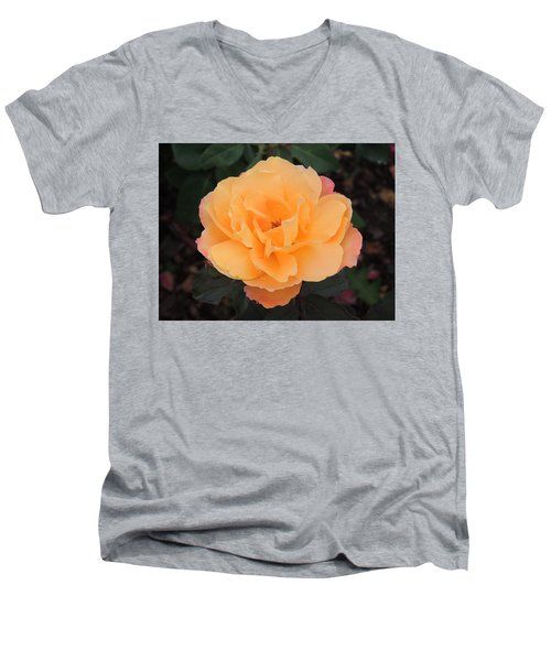 Velvety Orange Rose Men's V-Neck T-Shirt