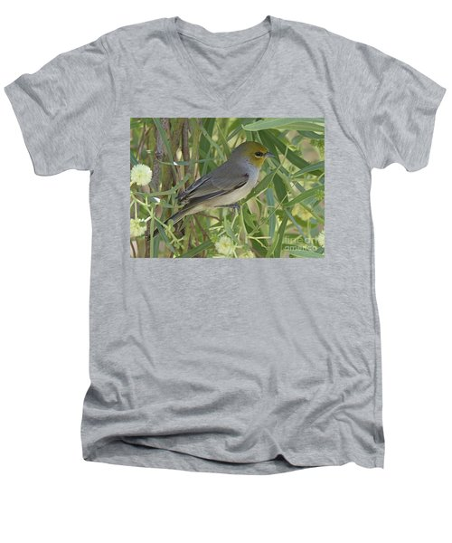 Men's V-Neck T-Shirt featuring the photograph Verdin In Tree by Anne Rodkin