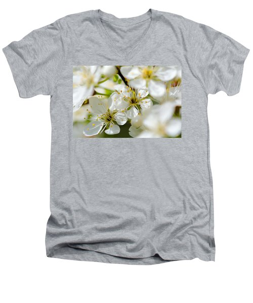 Vermont Apple Blossoms Men's V-Neck T-Shirt