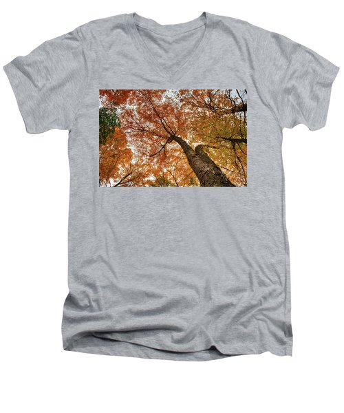 Vermont Fall Foliage Views Men's V-Neck T-Shirt