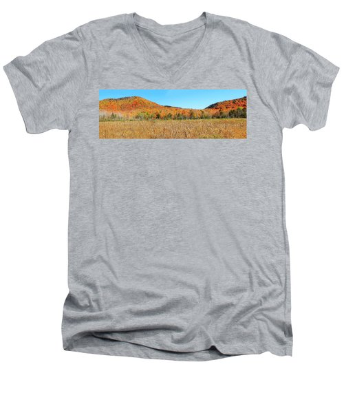 Vermont Foliage 1 Men's V-Neck T-Shirt