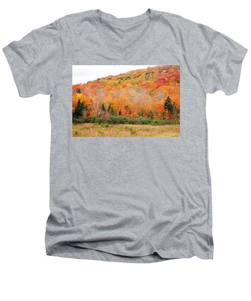 Vermont Foliage Men's V-Neck T-Shirt