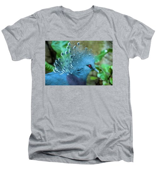 Victoria Crowned Pigeon Men's V-Neck T-Shirt