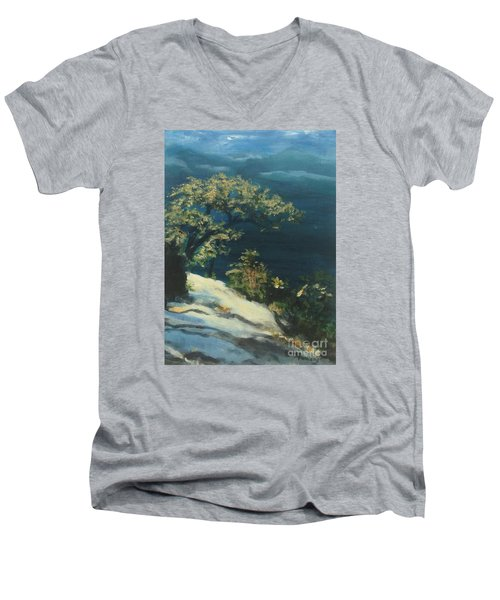 Men's V-Neck T-Shirt featuring the painting View From The Top by Mary Lynne Powers