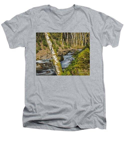 Views Of A Stream, I Men's V-Neck T-Shirt