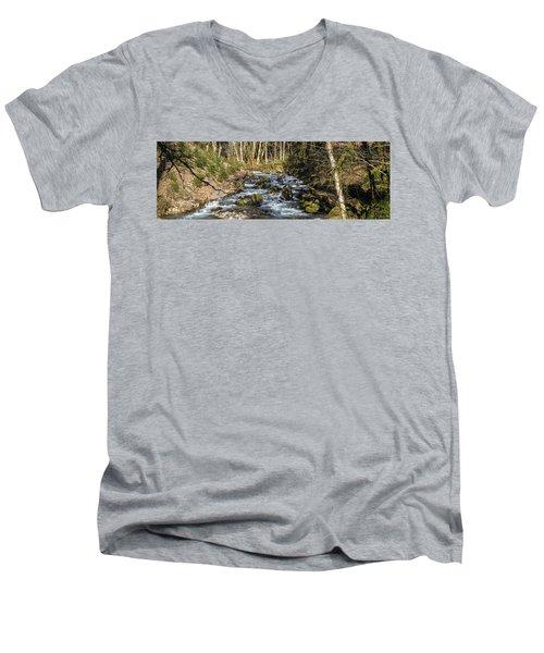 Views Of A Stream, II Men's V-Neck T-Shirt