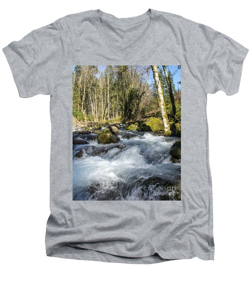 Views Of A Stream, IIi Men's V-Neck T-Shirt