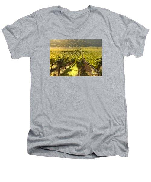 Vineyard In Napa Valley Men's V-Neck T-Shirt by Diane Diederich