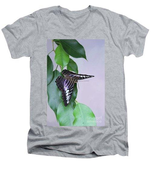 Violet Clipper Butterfly V2 Men's V-Neck T-Shirt
