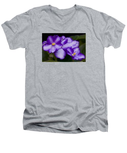 Violet Dreams Men's V-Neck T-Shirt