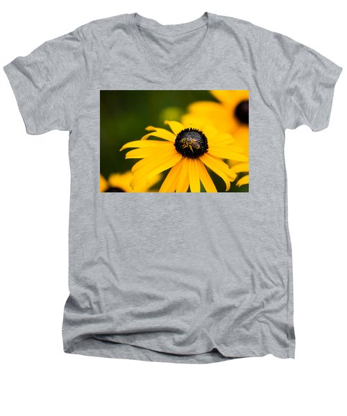 Visitor In The Garden Men's V-Neck T-Shirt by Shelby  Young