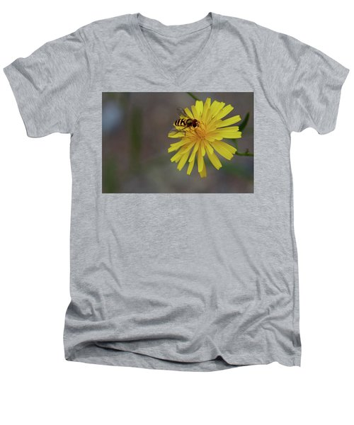 Visitor Men's V-Neck T-Shirt