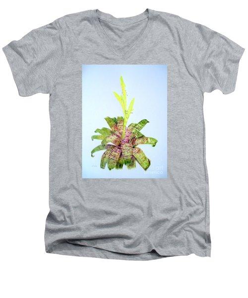 Vriesea Ospinae Var. Gruberi Men's V-Neck T-Shirt