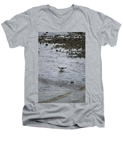 Wading Gull Men's V-Neck T-Shirt