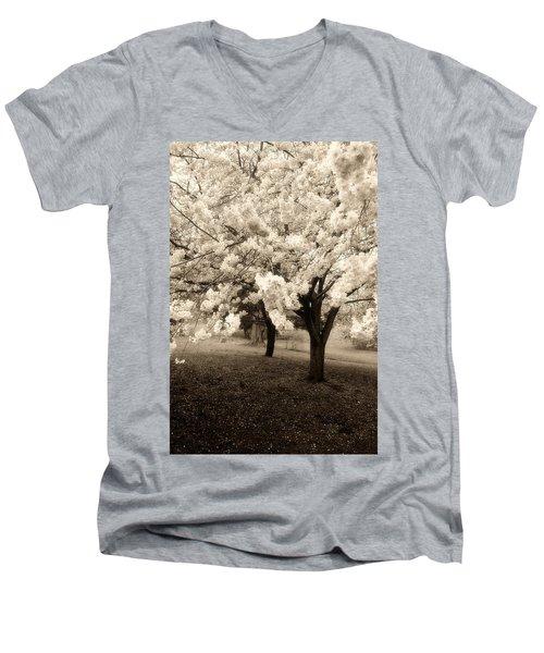 Waiting For Sunday - Holmdel Park Men's V-Neck T-Shirt