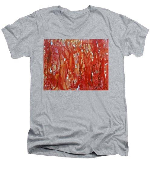 Walk In The Wood Men's V-Neck T-Shirt