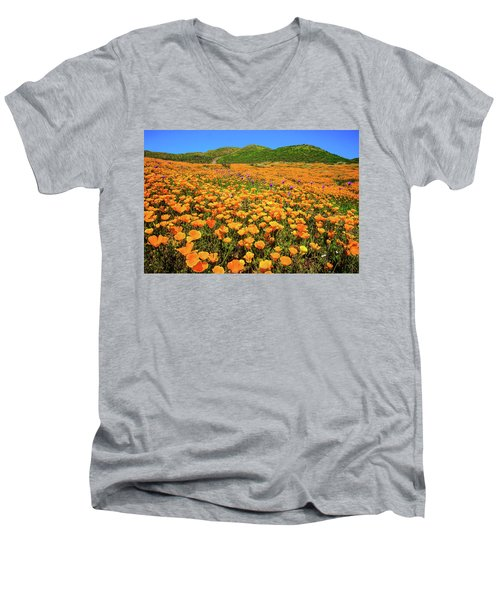 Walker Canyon Wildflowers Men's V-Neck T-Shirt