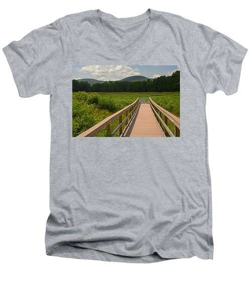 Walkway To A Mountain Color Men's V-Neck T-Shirt
