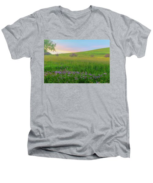 Wally Baskets At Sunrise Men's V-Neck T-Shirt by Marc Crumpler