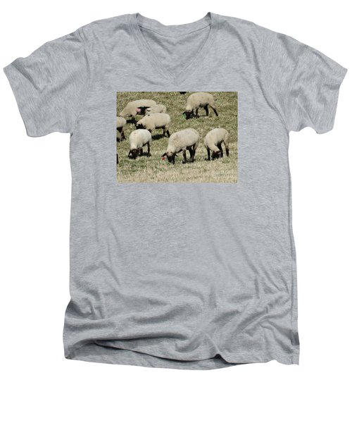 Men's V-Neck T-Shirt featuring the photograph Wandering Wool by J L Zarek