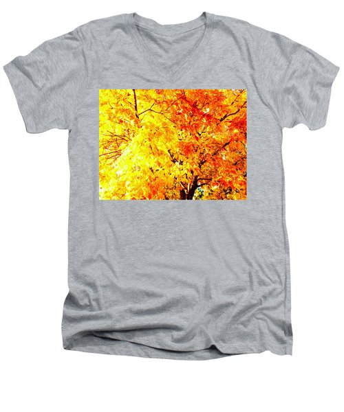 Warmth Of Fall Men's V-Neck T-Shirt