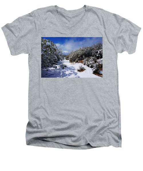 Warner Springs Snow Men's V-Neck T-Shirt