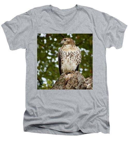 Watchful Eye Men's V-Neck T-Shirt by Jim Gillen