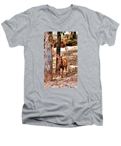 Watchfull Stag Men's V-Neck T-Shirt by James Potts