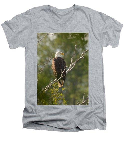 Watching Eagle Men's V-Neck T-Shirt