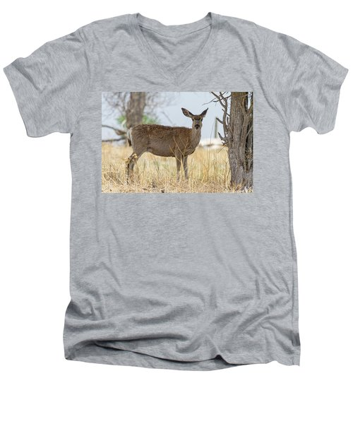 Watching From The Woods Men's V-Neck T-Shirt by James BO Insogna