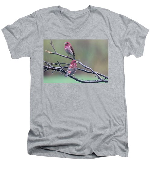 Men's V-Neck T-Shirt featuring the photograph Watching Over You by Susan Capuano