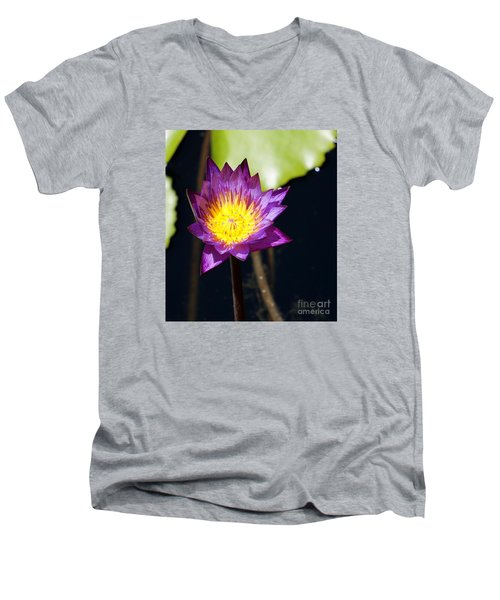 Water Lily 13 Men's V-Neck T-Shirt