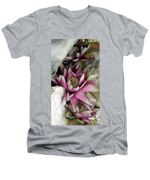 Water Lily - Seerose Men's V-Neck T-Shirt