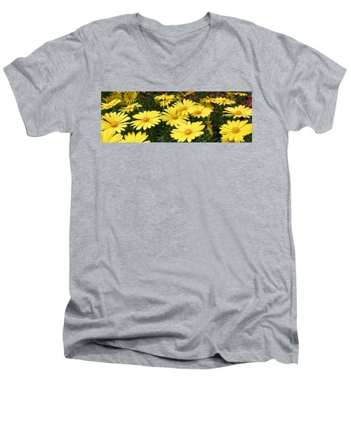 Waves Of Yellow Daisies Men's V-Neck T-Shirt by Bruce Bley