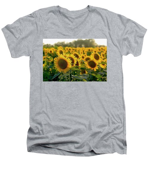 Waving Sunflowers In A Field Men's V-Neck T-Shirt
