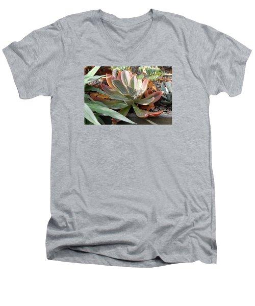 Wax Rose Men's V-Neck T-Shirt