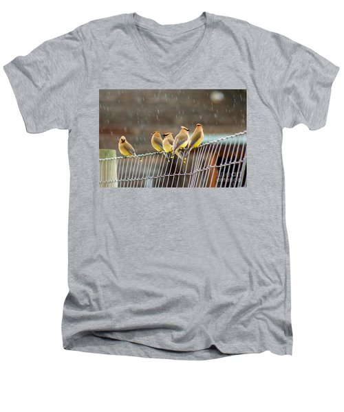 Waxwings In The Rain Men's V-Neck T-Shirt