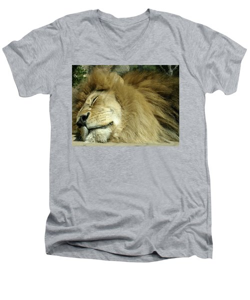 We All Like To Pass As Cats Men's V-Neck T-Shirt