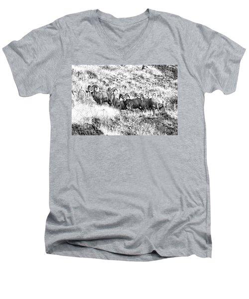 We Have A Visitor Men's V-Neck T-Shirt by Steve Warnstaff