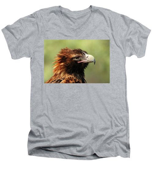 Wedge-tailed Eagle Men's V-Neck T-Shirt by Marion Cullen