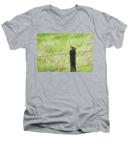 Western Meadowlark Men's V-Neck T-Shirt