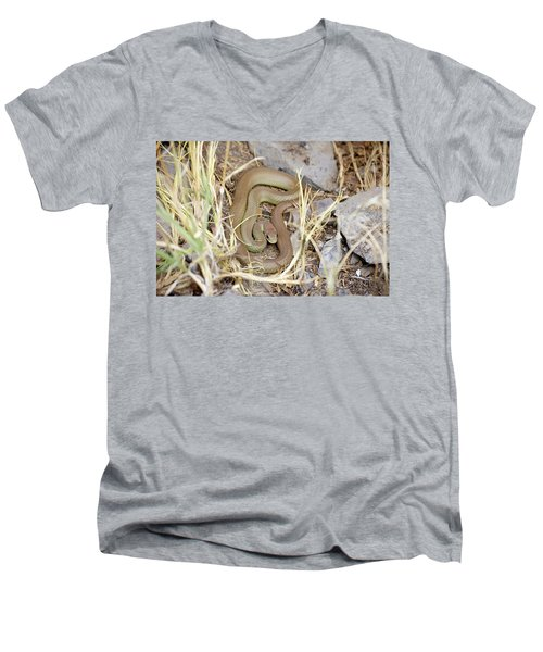 Western Yellow-bellied Racer, Coluber Constrictor Men's V-Neck T-Shirt