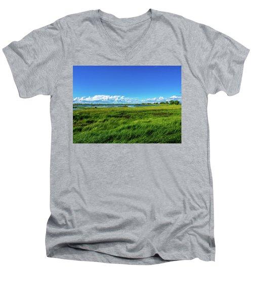 Wetlands On A Windy Spring Day Men's V-Neck T-Shirt
