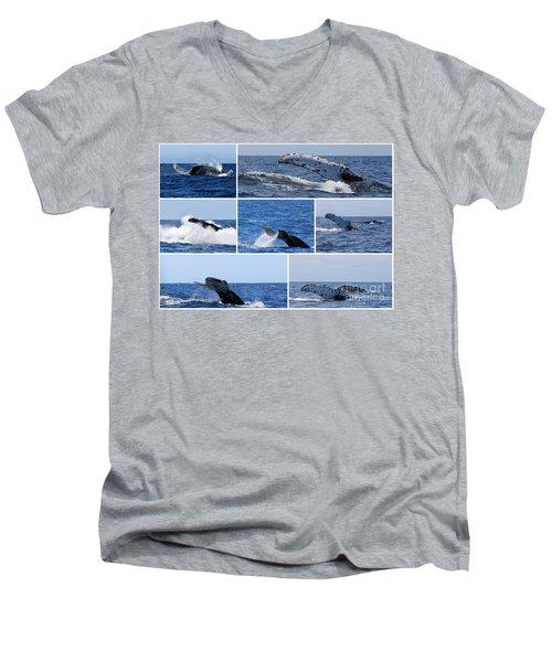 Whale Action Men's V-Neck T-Shirt