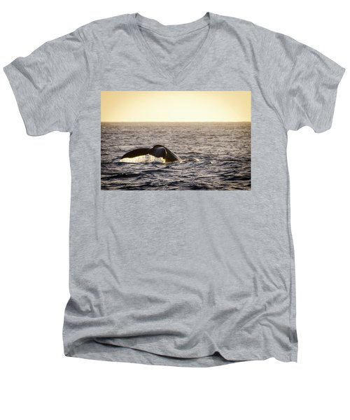 Whale Fluke Men's V-Neck T-Shirt