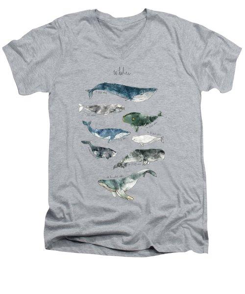 Whales Men's V-Neck T-Shirt by Amy Hamilton