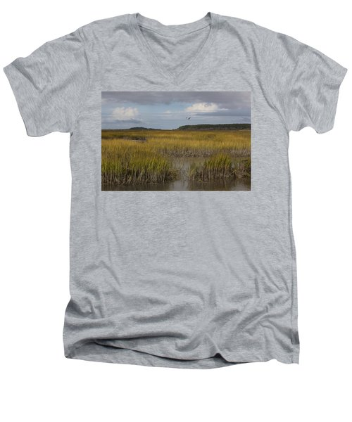 What A Beautiful Day Men's V-Neck T-Shirt