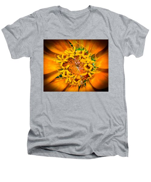 What A Bee Sees Men's V-Neck T-Shirt by Kenneth Cole