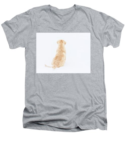 What Do You See? Men's V-Neck T-Shirt